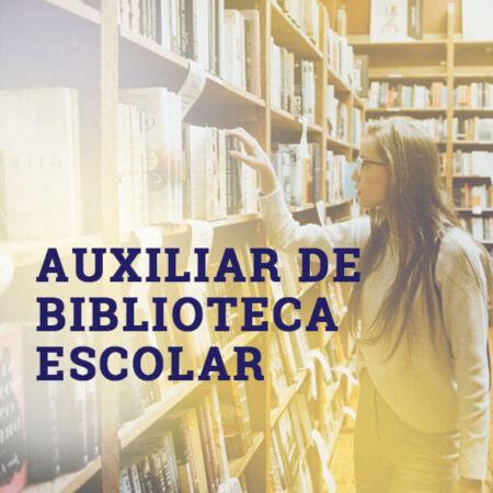 Auxiliar de Biblioteca Escolar